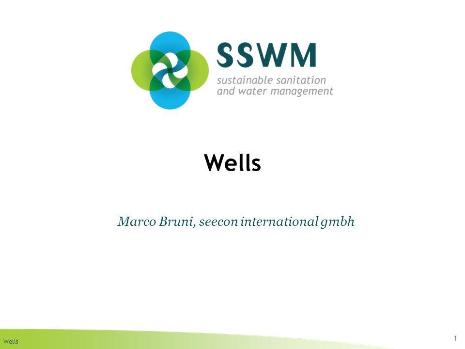 Wells 1 Marco Bruni, seecon international gmbh