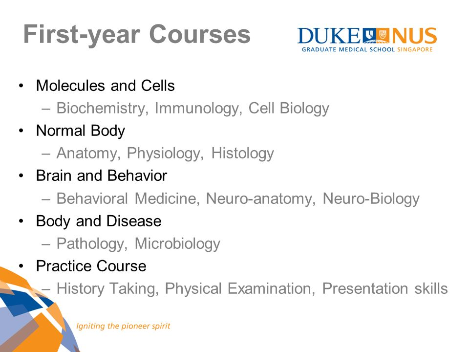 First-year Courses Molecules and Cells –Biochemistry, Immunology, Cell Biology Normal Body –Anatomy, Physiology, Histology Brain and Behavior –Behavio