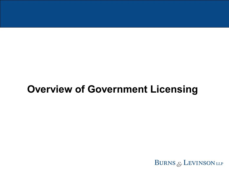 Overview of Government Licensing
