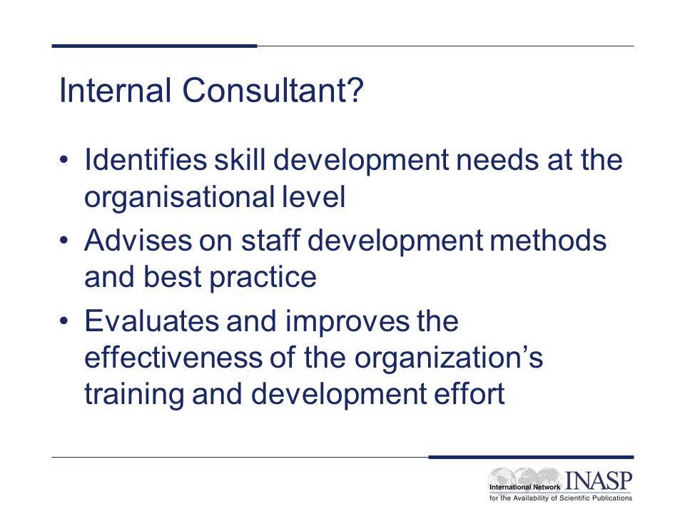 Internal Consultant.
