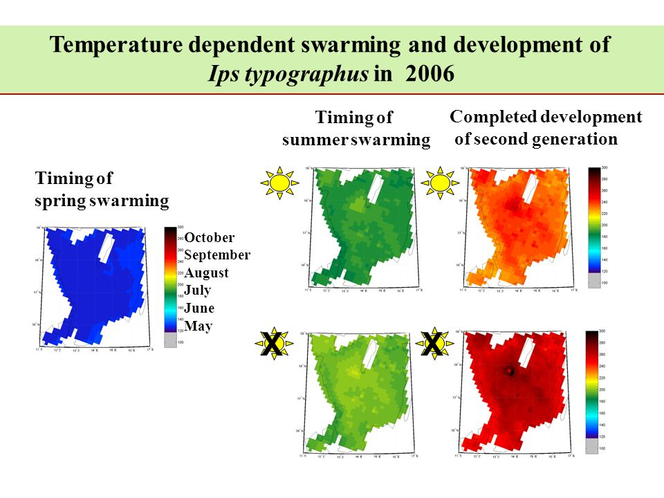 Temperature dependent swarming and development of Ips typographus in 2006 Timing of spring swarming Timing of summer swarming Completed development of second generation XX October September August July June May