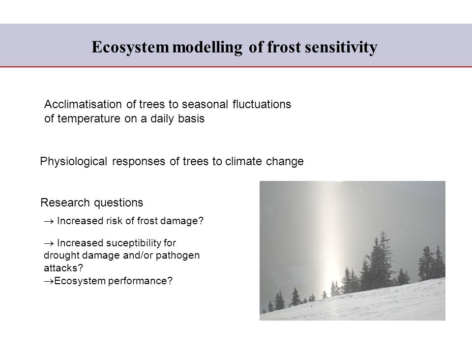 Ecosystem modelling of frost sensitivity Physiological responses of trees to climate change Increased risk of frost damage.
