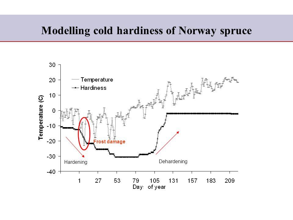 Modelling cold hardiness of Norway spruce Hardening Dehardening Frost damage