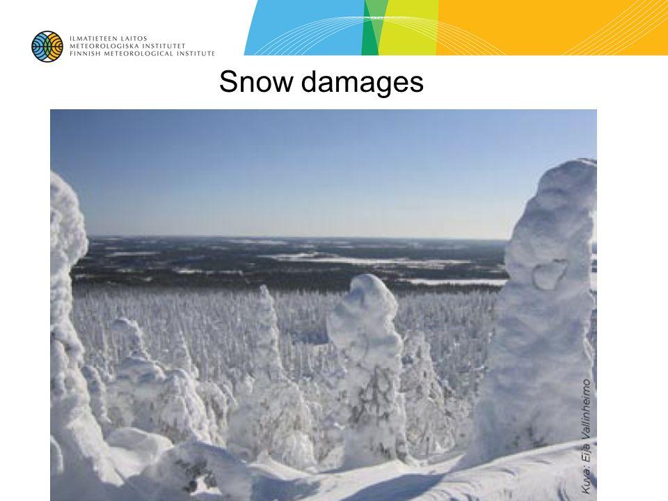 Snow damages