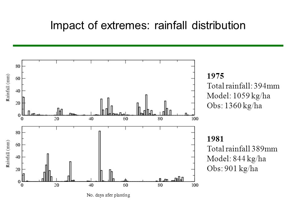 Impact of extremes: rainfall distribution 1975 Total rainfall: 394mm Model: 1059 kg/ha Obs: 1360 kg/ha 1981 Total rainfall 389mm Model: 844 kg/ha Obs: 901 kg/ha