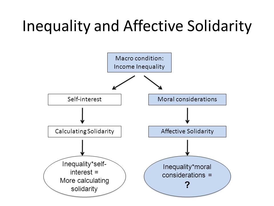 Conclusion We find a negative relationship between income inequality and affective solidarity Higher income inequality is related to lower levels of concern for the living conditions of the needy and less willingness to help to improve the living conditions of the needy Relationship between income inequality and affective solidarity is different from what has been proposed so far about the relationship between inequality and calculating solidarity