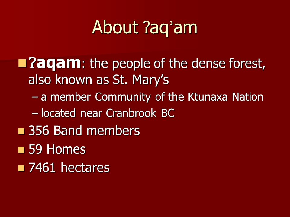About ʔ aq ʾ am aqam : the people of the dense forest, also known as St.