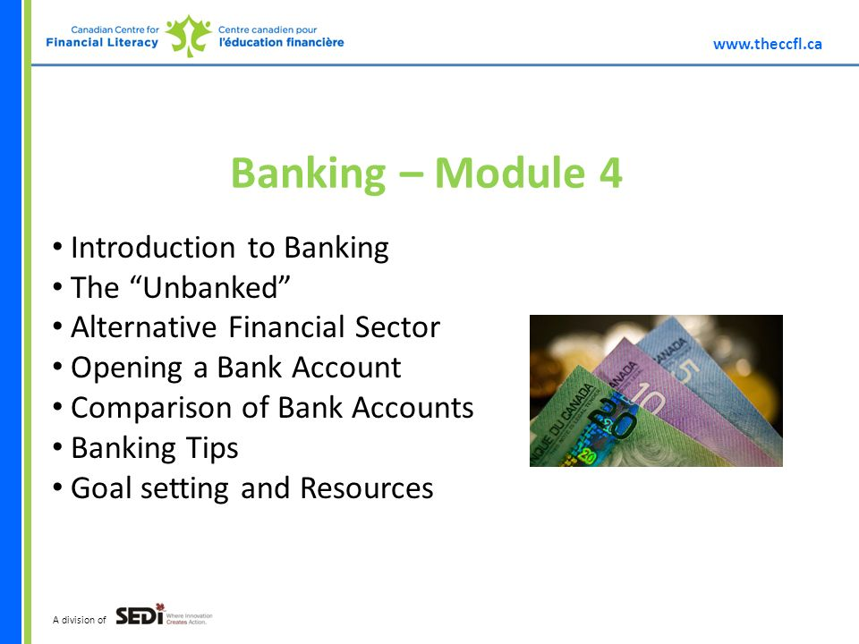 A division of Banking – Module 4 Introduction to Banking The Unbanked Alternative Financial Sector Opening a Bank Account Comparison of Bank Accounts Banking Tips Goal setting and Resources