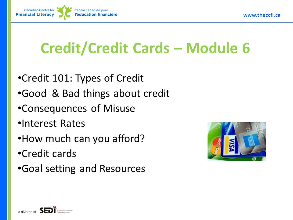 A division of Credit/Credit Cards – Module 6 Credit 101: Types of Credit Good & Bad things about credit Consequences of Misuse Interest Rates How much can you afford.