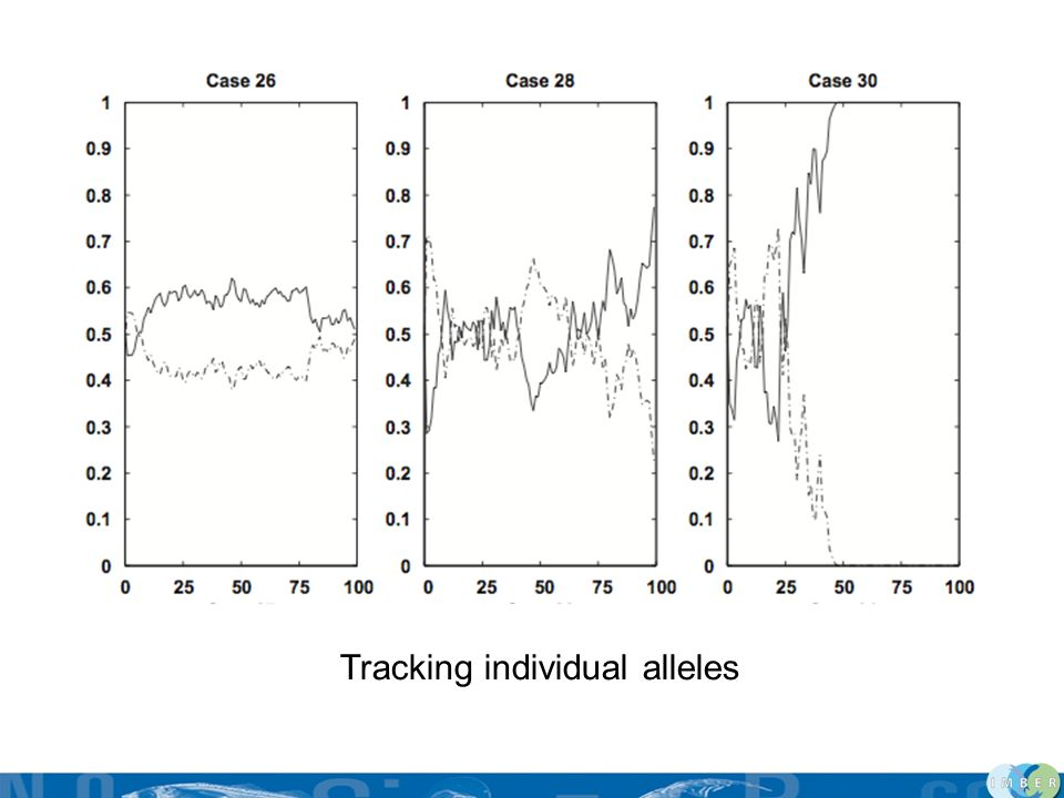 Tracking individual alleles