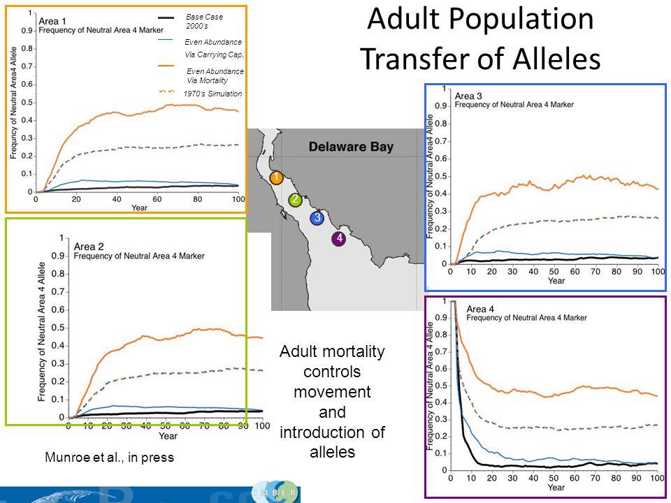 34 1 2 3 4 Adult Population Transfer of Alleles Base Case 2000s Even Abundance Via Mortality 1970s Simulation Even Abundance Via Carrying Cap. Adult m