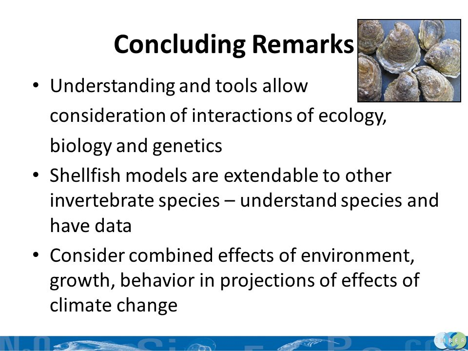 Concluding Remarks Understanding and tools allow consideration of interactions of ecology, biology and genetics Shellfish models are extendable to oth