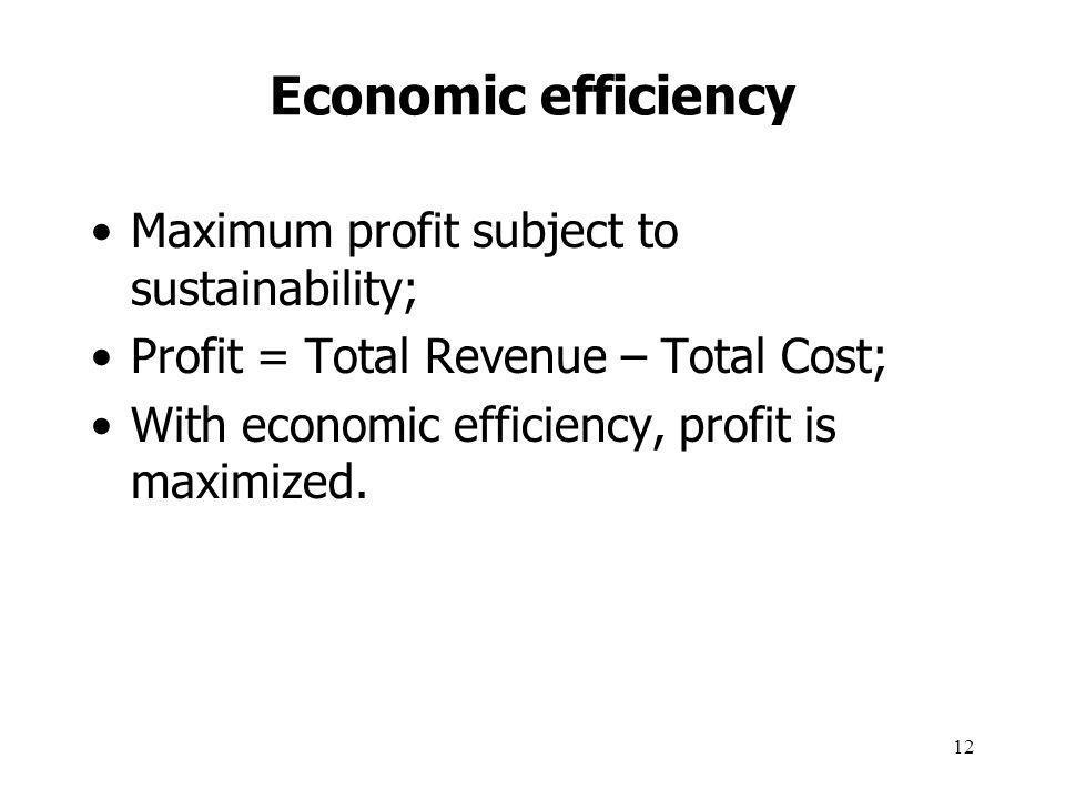 12 Economic efficiency Maximum profit subject to sustainability; Profit = Total Revenue – Total Cost; With economic efficiency, profit is maximized.
