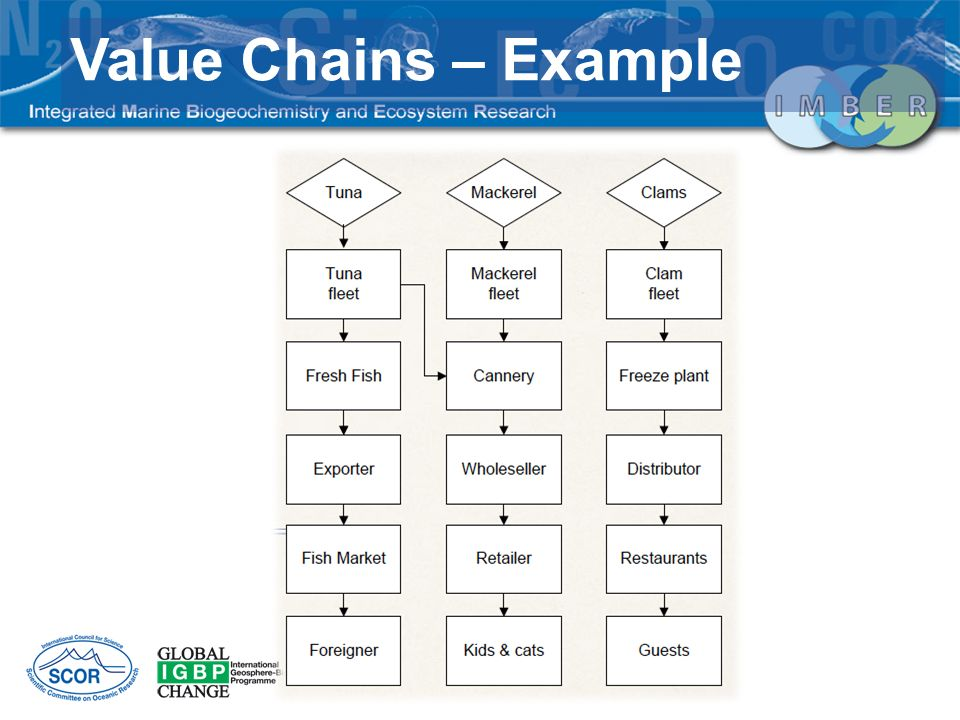 Value Chains – Example