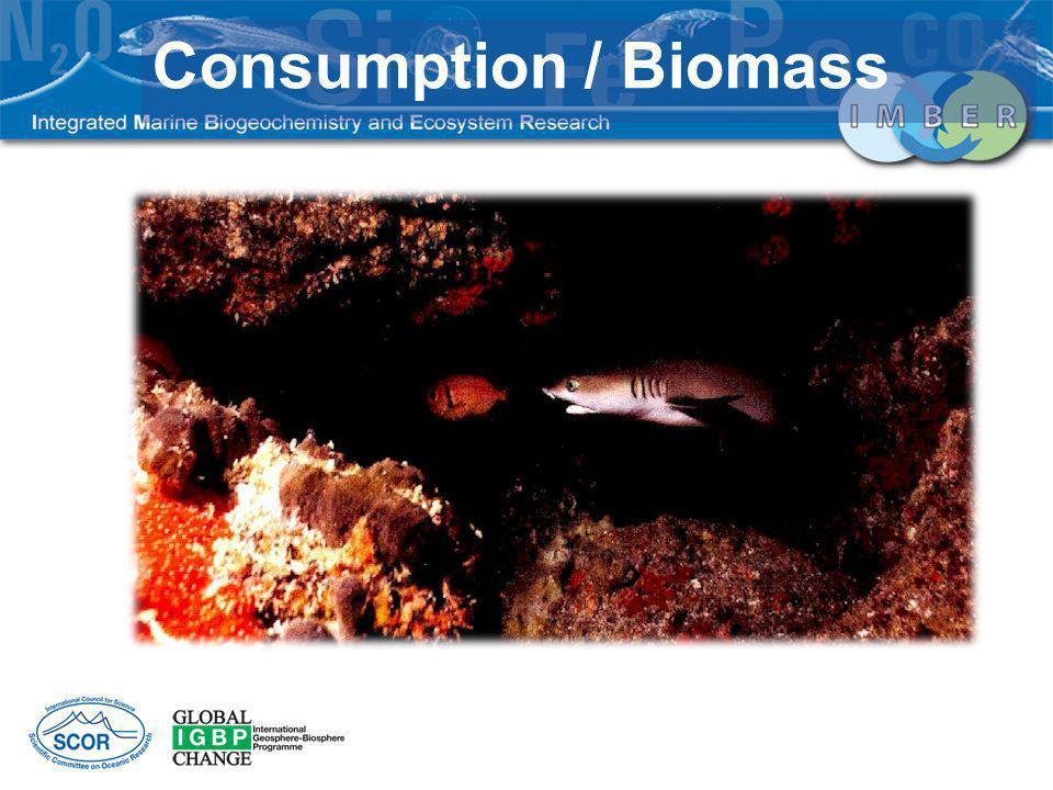 Consumption / Biomass