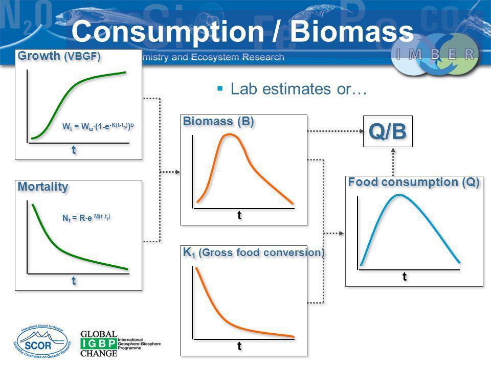 t t Growth (VBGF) t t Mortality t t Biomass (B) t t K 1 (Gross food conversion) t t Food consumption (Q) W t = W ·(1-e -K(t-t 0 ) ) b N t = R·e -M(t-t