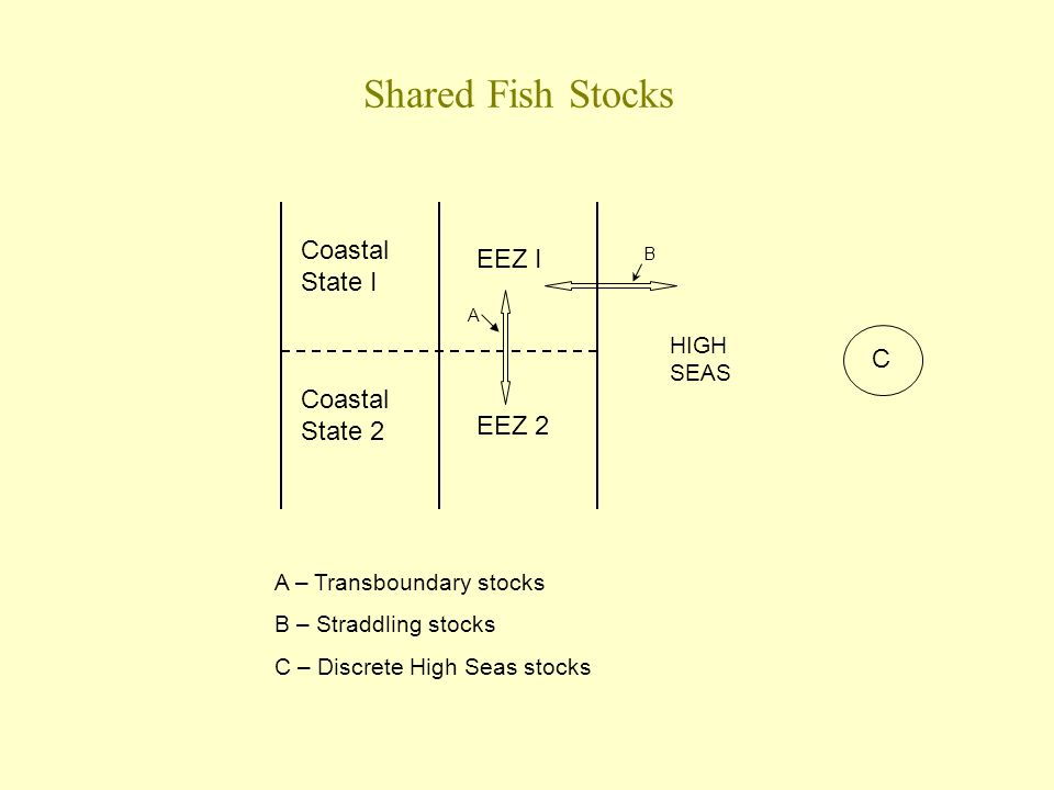Shared Fish Stocks Coastal State I Coastal State 2 EEZ I EEZ 2 A B C A – Transboundary stocks B – Straddling stocks C – Discrete High Seas stocks HIGH SEAS