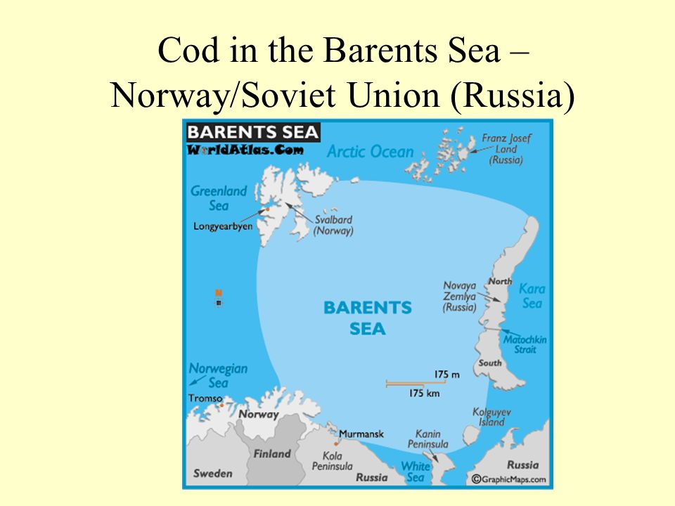 Cod in the Barents Sea – Norway/Soviet Union (Russia)