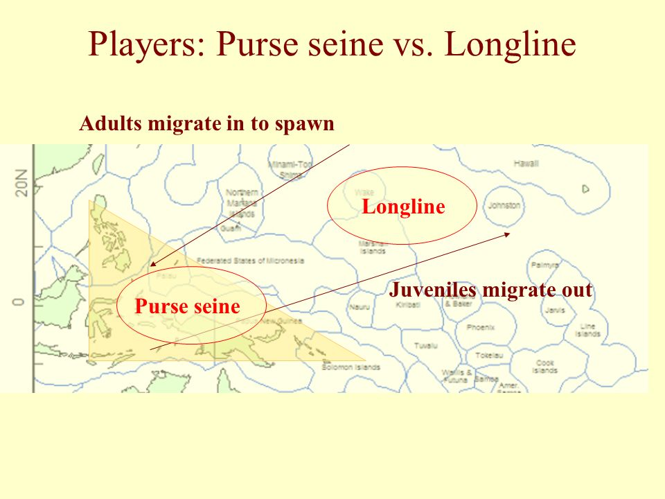 Adults migrate in to spawn Juveniles migrate out Purse seine Longline Players: Purse seine vs.