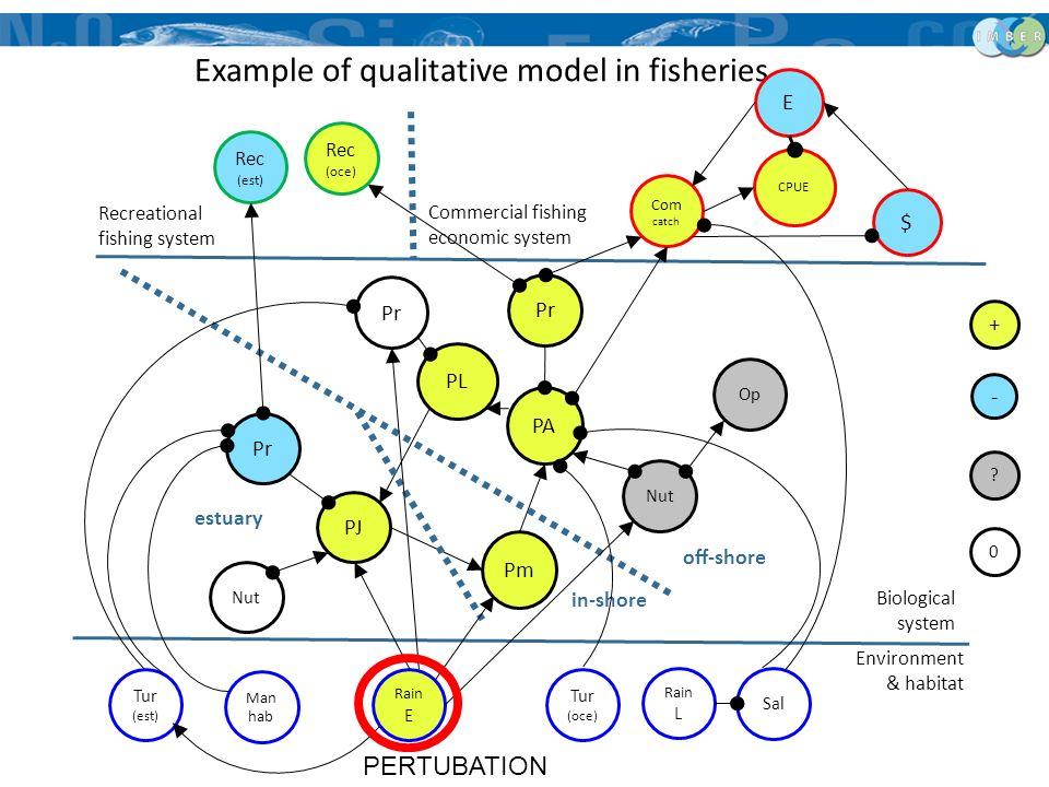 PL PA PJ Pm Pr Nut Op Pr off-shore in-shore estuary Example of qualitative model in fisheries Rec (est) Com catch CPUE E $ Tur (est) Man hab Rain E Ra