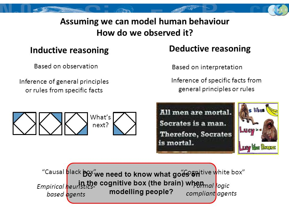 Do we need to know what goes on in the cognitive box (the brain) when modelling people? Assuming we can model human behaviour How do we observed it? I
