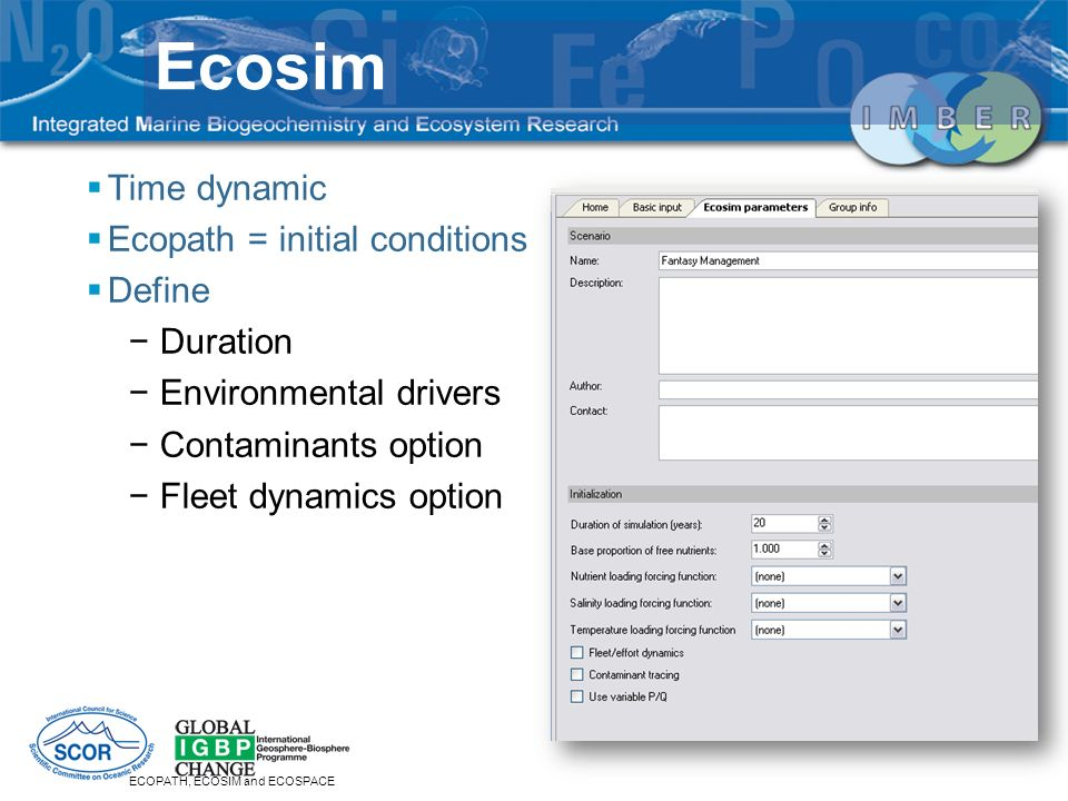 Time dynamic Ecopath = initial conditions Define Duration Environmental drivers Contaminants option Fleet dynamics option ECOPATH, ECOSIM and ECOSPACE Ecosim