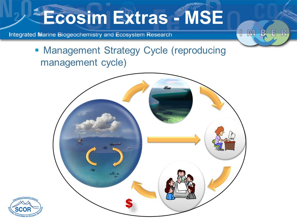 Management Strategy Cycle (reproducing management cycle) Ecosim Extras - MSE