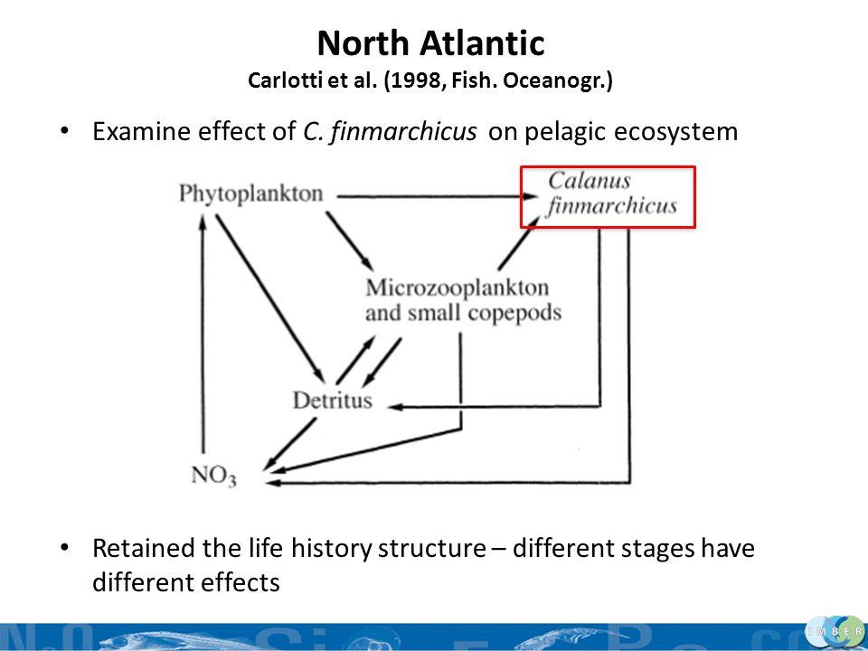 North Atlantic Carlotti et al. (1998, Fish. Oceanogr.) Examine effect of C. finmarchicus on pelagic ecosystem Retained the life history structure – di
