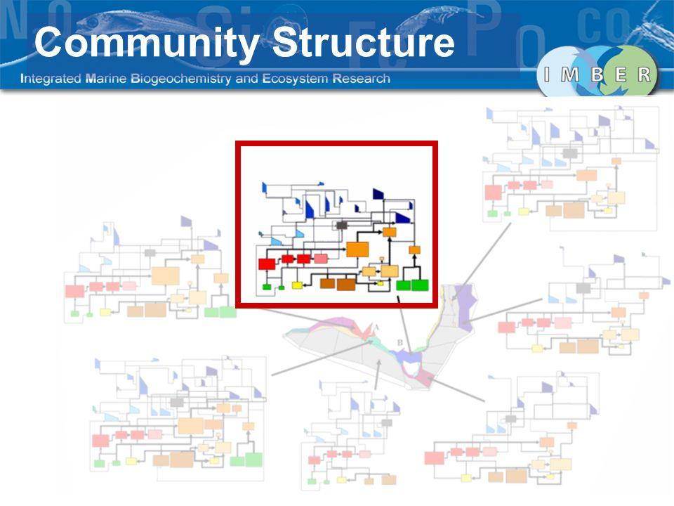 Community Structure