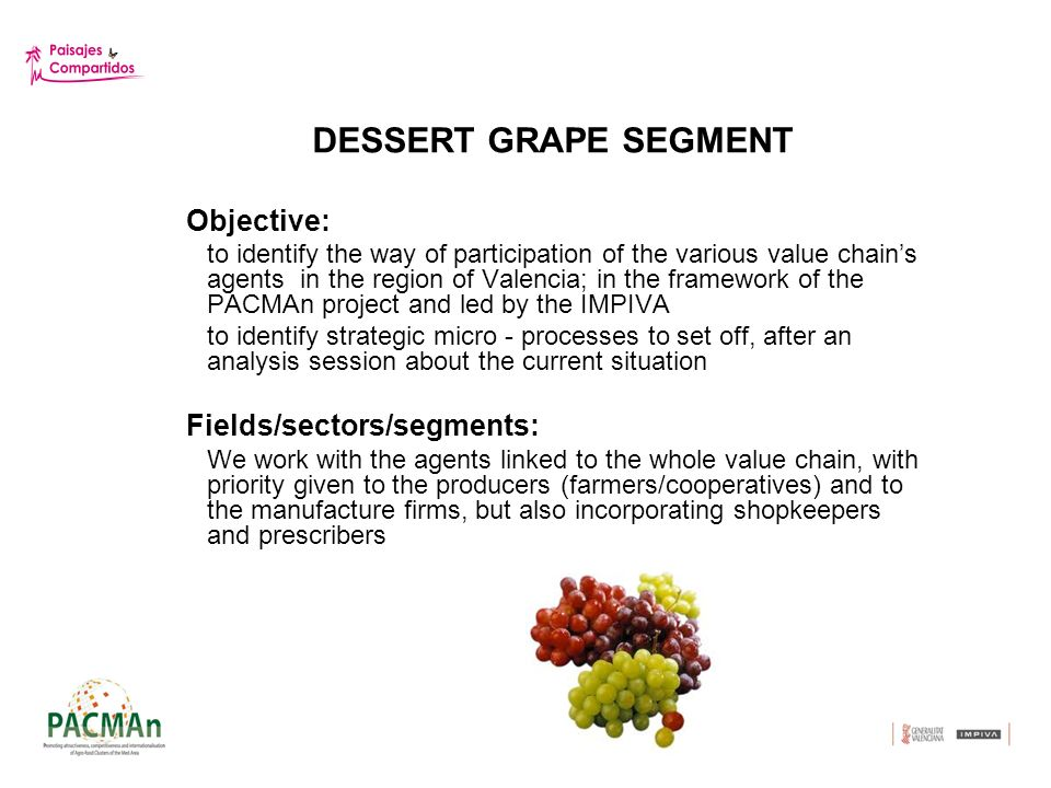 DESSERT GRAPE SEGMENT Conclusions A.Innovation The dessert grape supply is gradually incorporating singular packing systems which provide a greater life rank before the consumer and have to do with: - products identity (singularly concerning the Moscatel grape) - supplys identity (differentiation based on the work of packing and brand) The second important task has to do with the appropriate training which would make possible the optimization of the supply quality, by means of: - Ongoing training and guidance of the farmers work, especially about the products way of growing process; - Training of shopkeepers, cooks and prescribers about the products identity - Creation of culture among users