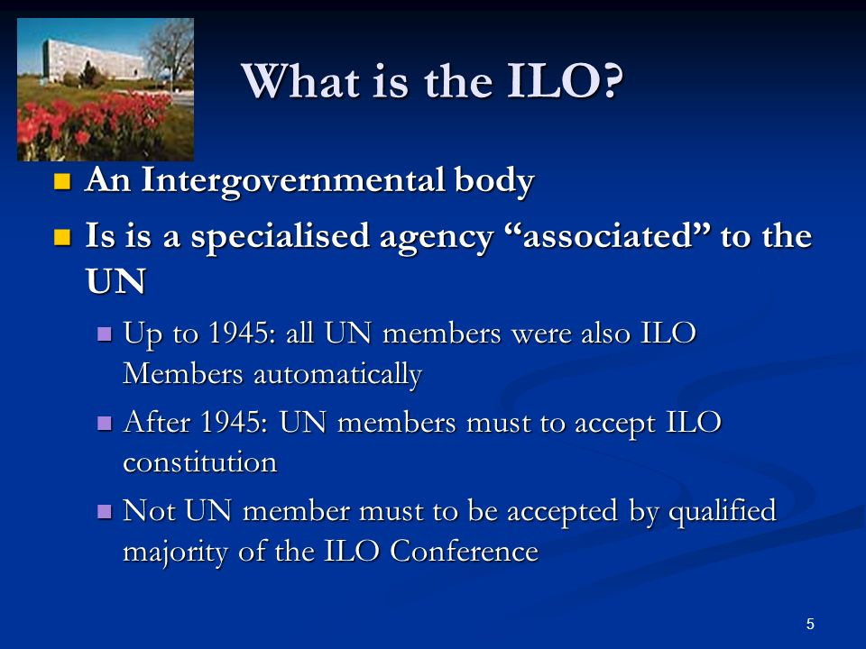 5 What is the ILO.