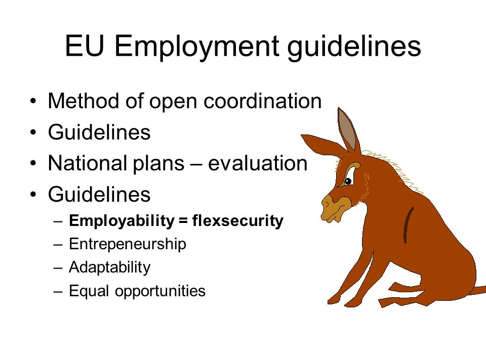 EU Employment guidelines Method of open coordination Guidelines National plans – evaluation Guidelines –Employability = flexsecurity –Entrepeneurship –Adaptability –Equal opportunities