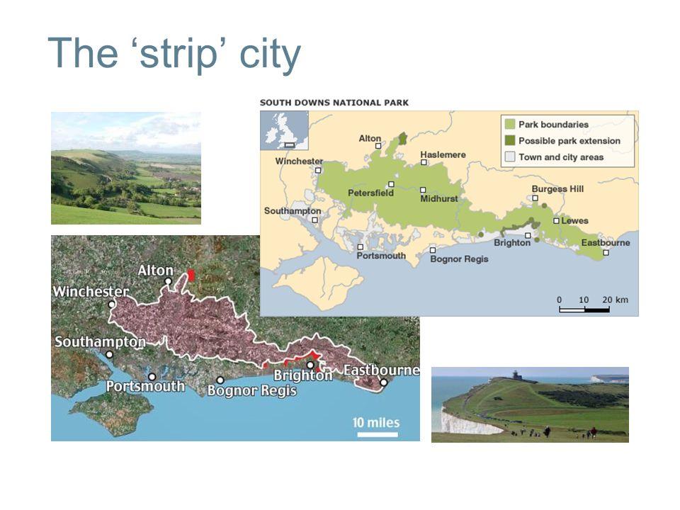 The strip city