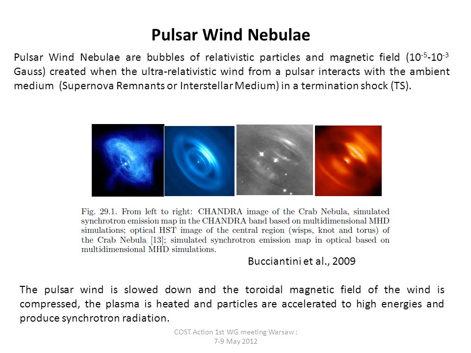 Pulsar Wind Nebulae Pulsar Wind Nebulae are bubbles of relativistic particles and magnetic field (10 -5 -10 -3 Gauss) created when the ultra-relativistic wind from a pulsar interacts with the ambient medium (Supernova Remnants or Interstellar Medium) in a termination shock (TS).