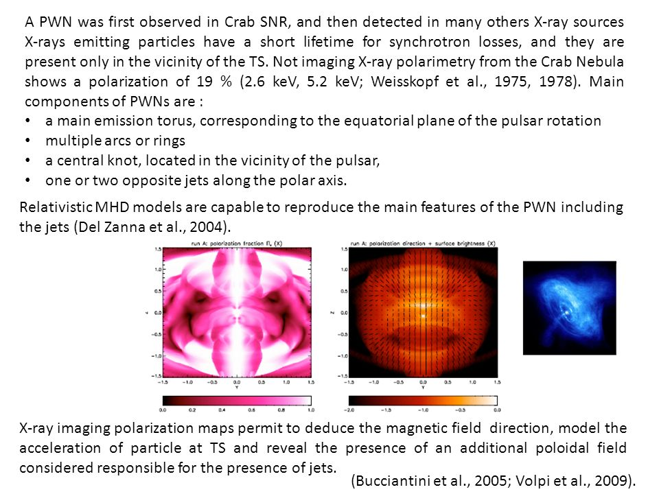 A PWN was first observed in Crab SNR, and then detected in many others X-ray sources X-rays emitting particles have a short lifetime for synchrotron losses, and they are present only in the vicinity of the TS.