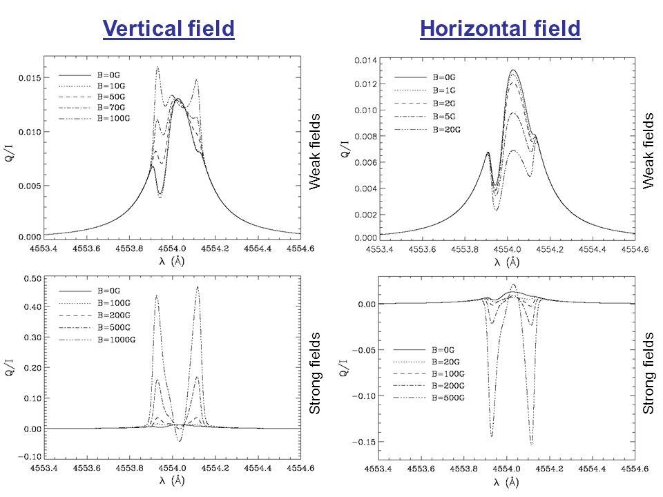 Vertical fieldHorizontal field Weak fields Strong fields Weak fields Strong fields
