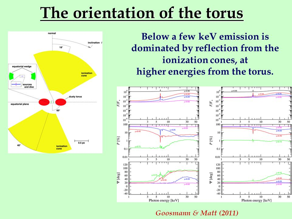 The orientation of the torus Goosmann & Matt (2011) Below a few keV emission is dominated by reflection from the ionization cones, at higher energies