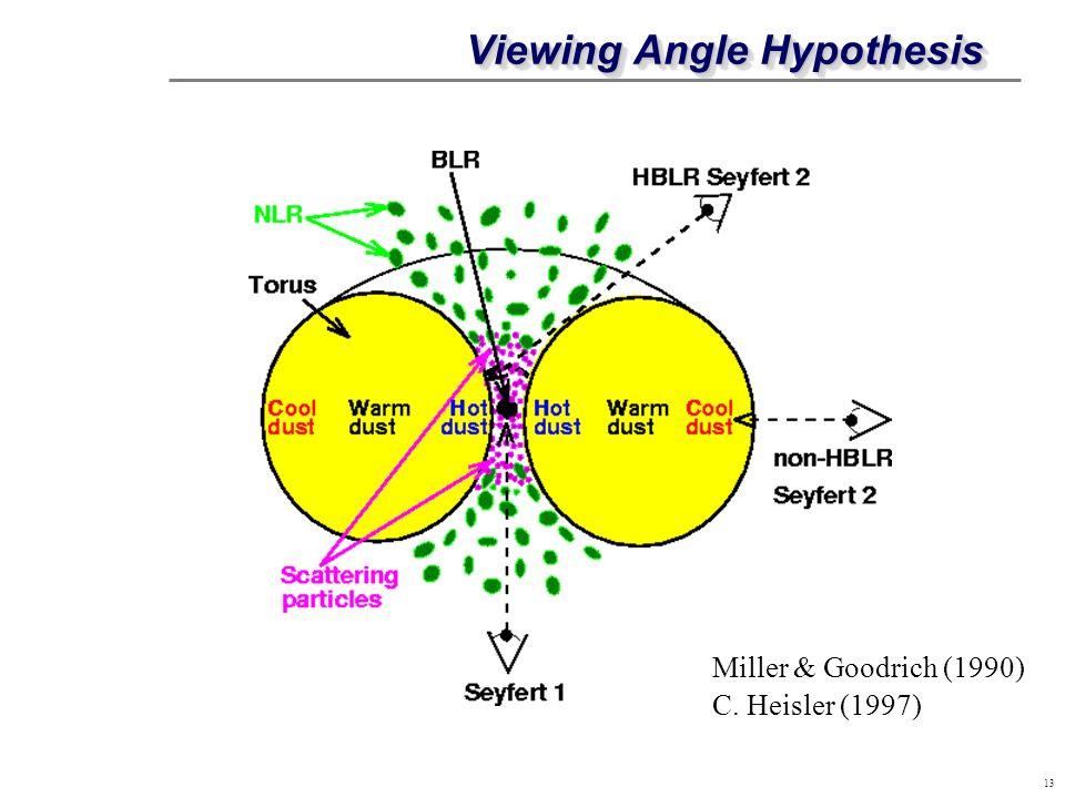13 Viewing Angle Hypothesis C. Heisler (1997) Miller & Goodrich (1990)