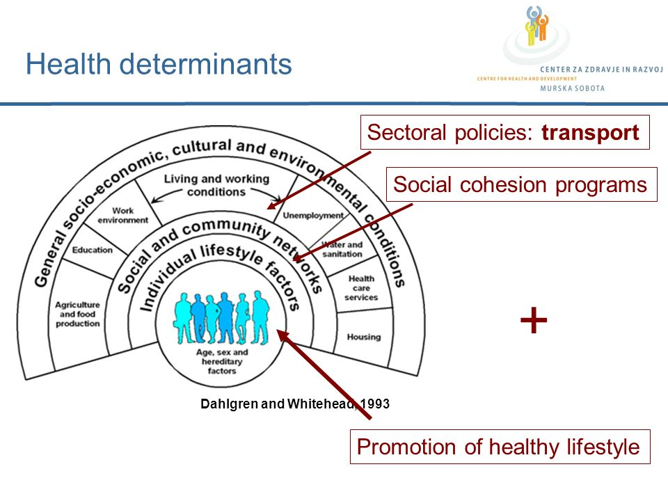 Health determinants Dahlgren and Whitehead, 1993 Promotion of healthy lifestyle Sectoral policies: transport Social cohesion programs +