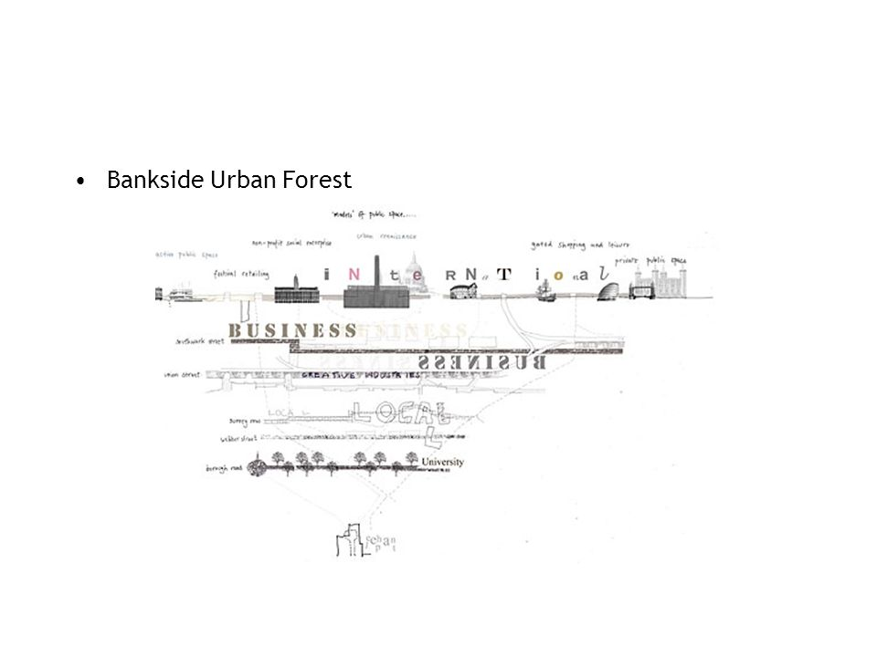 Bankside Urban Forest