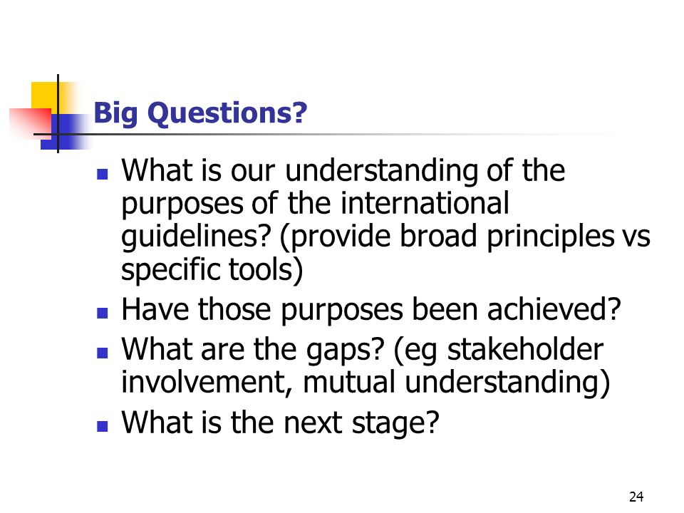 24 Big Questions? What is our understanding of the purposes of the international guidelines? (provide broad principles vs specific tools) Have those p