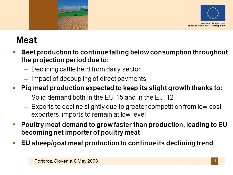 Portoroz, Slovenia, 8 May 2008 14 Meat Beef production to continue falling below consumption throughout the projection period due to: –Declining cattl