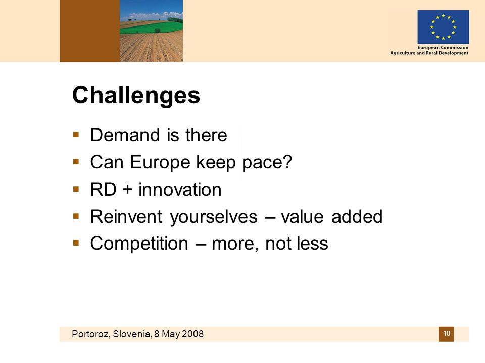 Portoroz, Slovenia, 8 May 2008 18 Challenges Demand is there Can Europe keep pace? RD + innovation Reinvent yourselves – value added Competition – mor