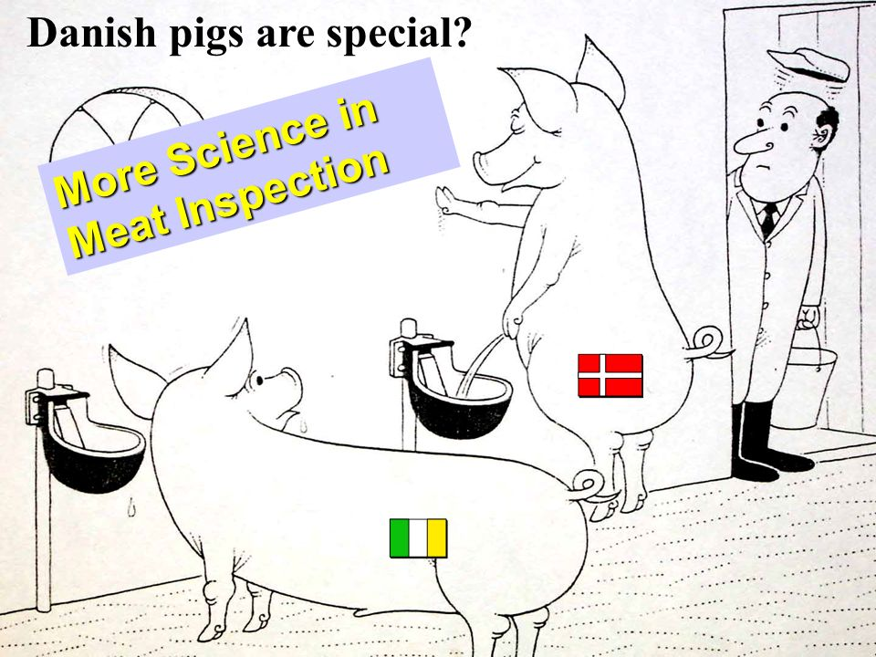 Danish pigs are special? More Science in Meat Inspection