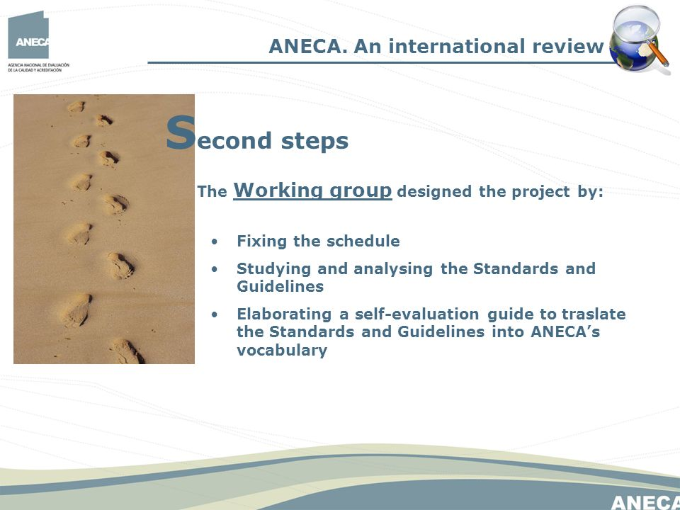 The Working group designed the project by: Fixing the schedule Studying and analysing the Standards and Guidelines Elaborating a self-evaluation guide to traslate the Standards and Guidelines into ANECAs vocabulary ANECA.