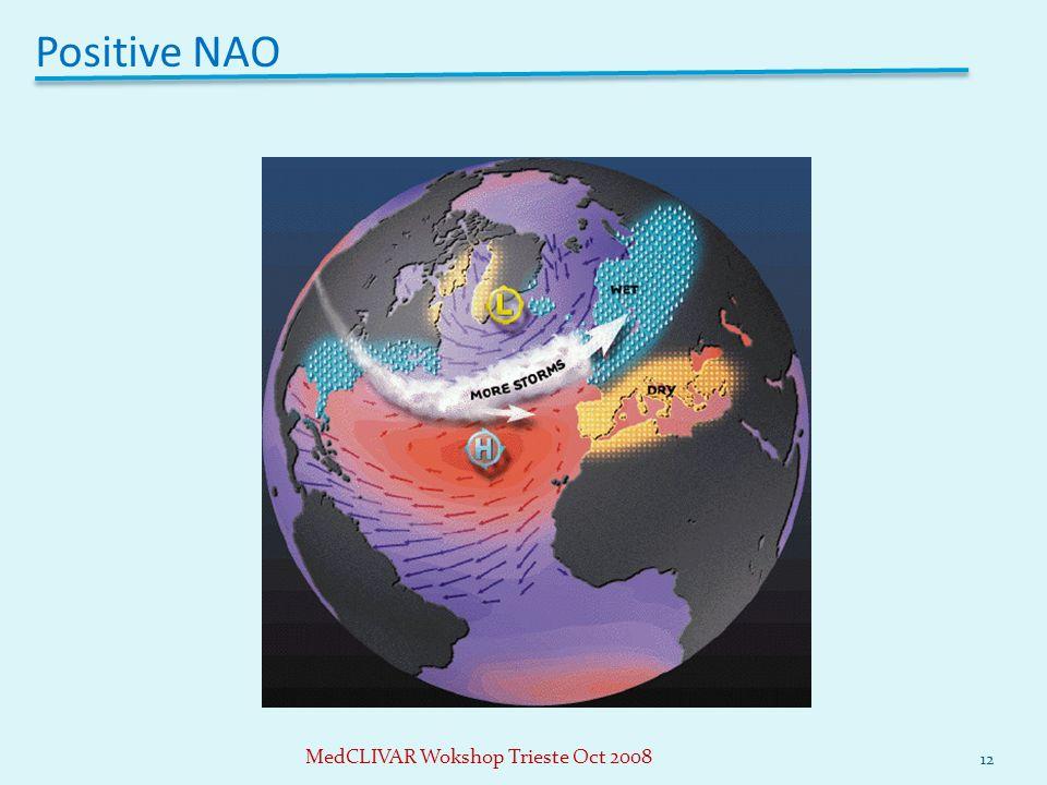 Positive NAO 12 MedCLIVAR Wokshop Trieste Oct 2008