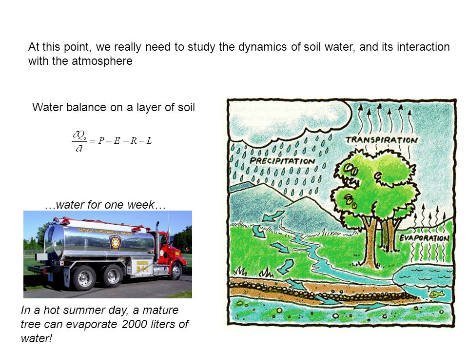 Water balance on a layer of soil In a hot summer day, a mature tree can evaporate 2000 liters of water! …water for one week… At this point, we really