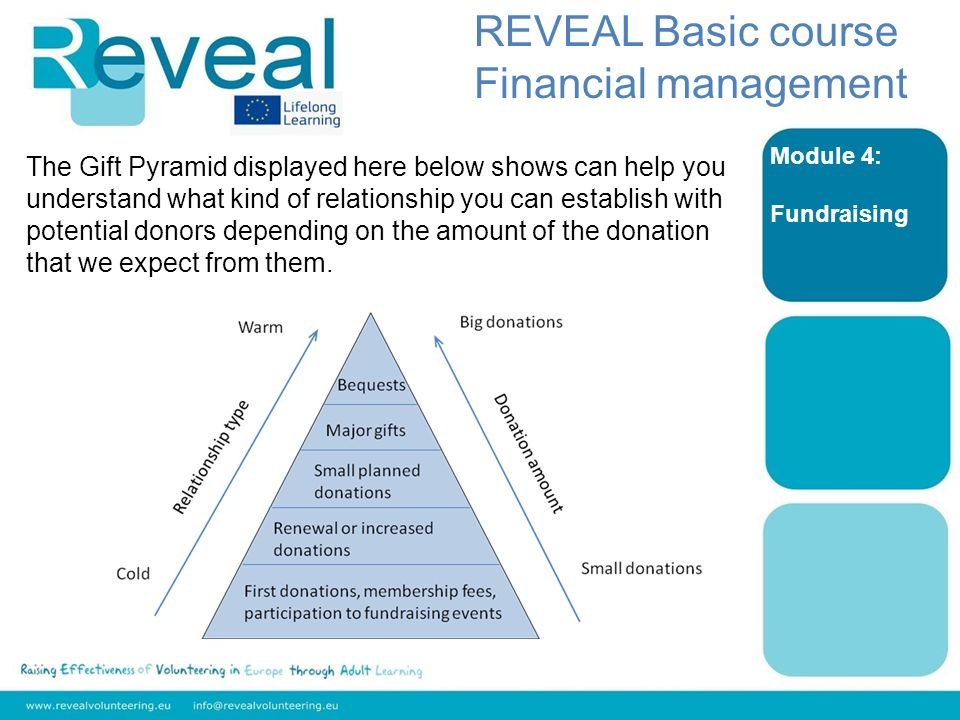 Module 4: Fundraising REVEAL Basic course Financial management The Gift Pyramid displayed here below shows can help you understand what kind of relationship you can establish with potential donors depending on the amount of the donation that we expect from them.
