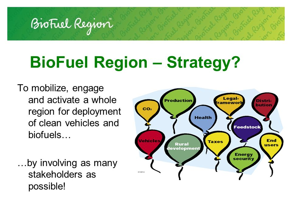 BioFuel Region – Strategy.