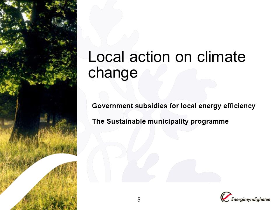 5 Local action on climate change Government subsidies for local energy efficiency The Sustainable municipality programme
